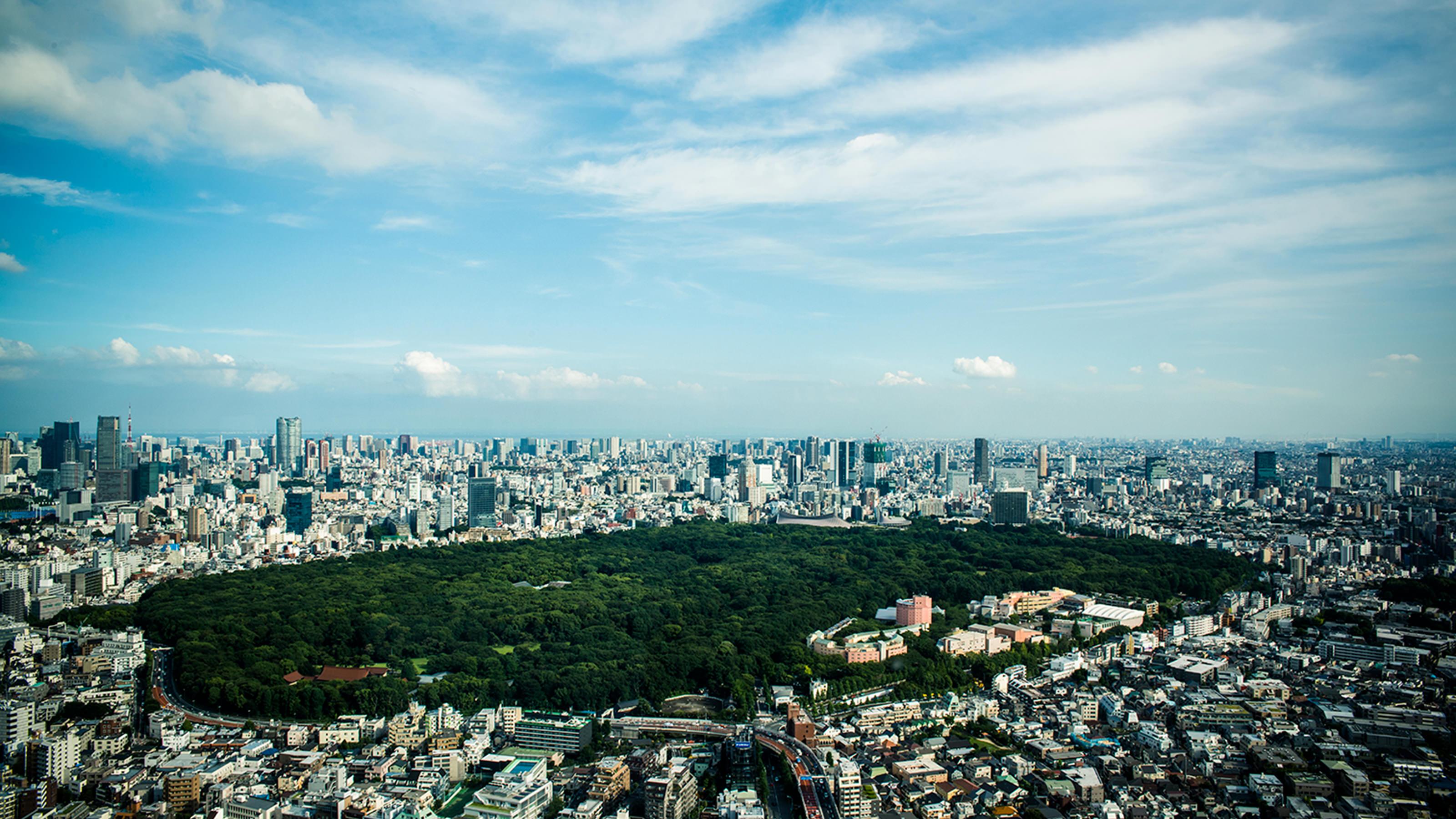Presidential Suite Suite Rooms Park Hyatt Tokyo